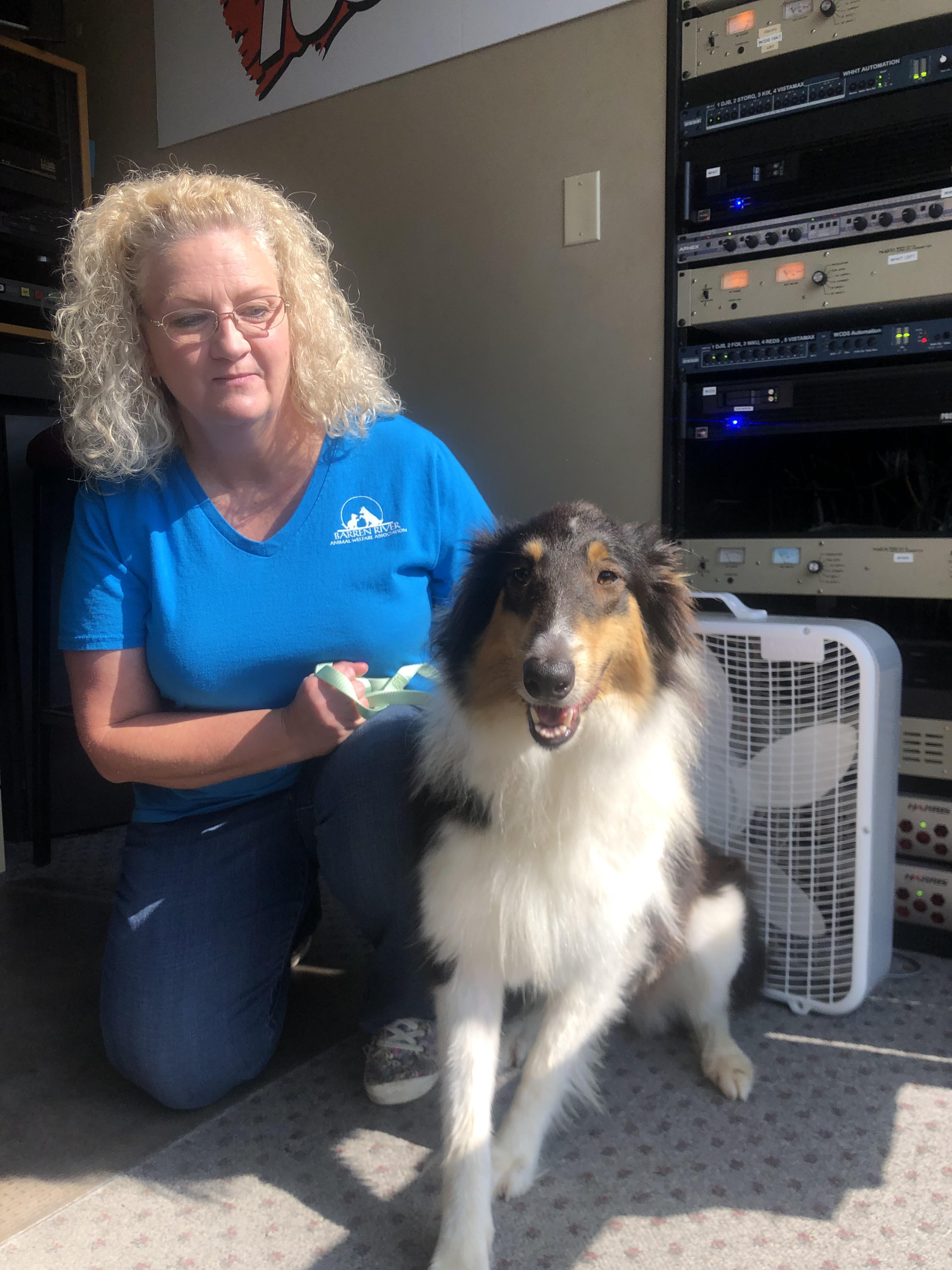 PETS & PAWS: Meet Missy and learn about Paw Ball