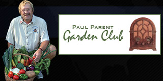 PAUL PARENT