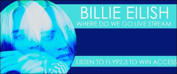 """BILLIE EILISH """"WHERE DO WE GO"""""""