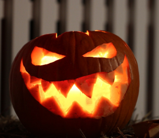 5 Tips To Prevent Your Jack-O'-Lantern From Rotting