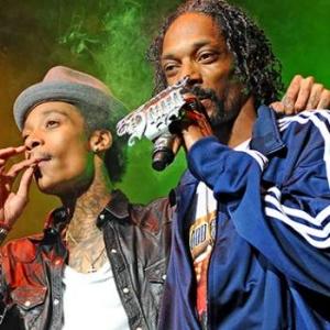 Video: Concierto de Snoop Dogg y Wiz Khalifa en Camden, Nueva Jersey deja 42 heridos