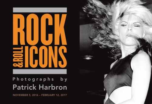 Rock and Roll Icons Exhibit thru February 12th, 2017