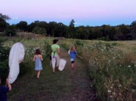 Traveling Talks: Silent Sparks of Fireflies