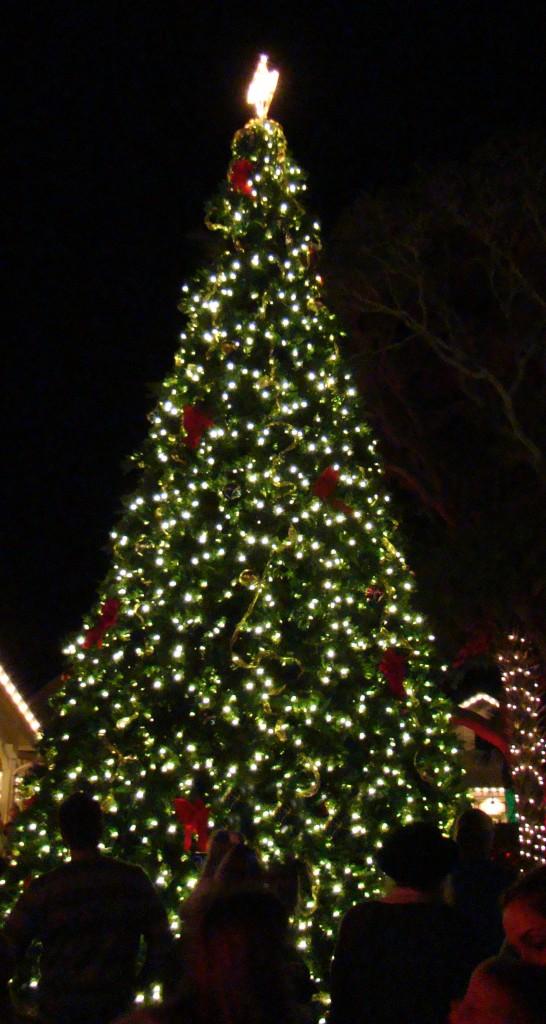 High Falls Holiday Tree Lighting