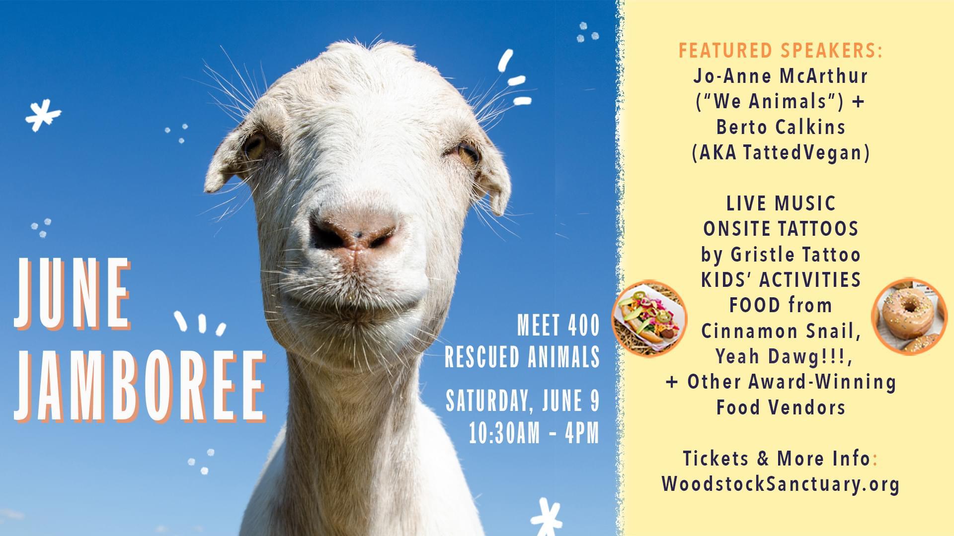 Woodstock Farm Sanctuary June Jamboree 2018