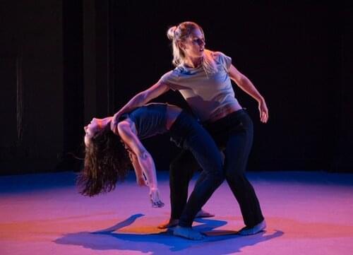 Online Fundraiser Dance Performance