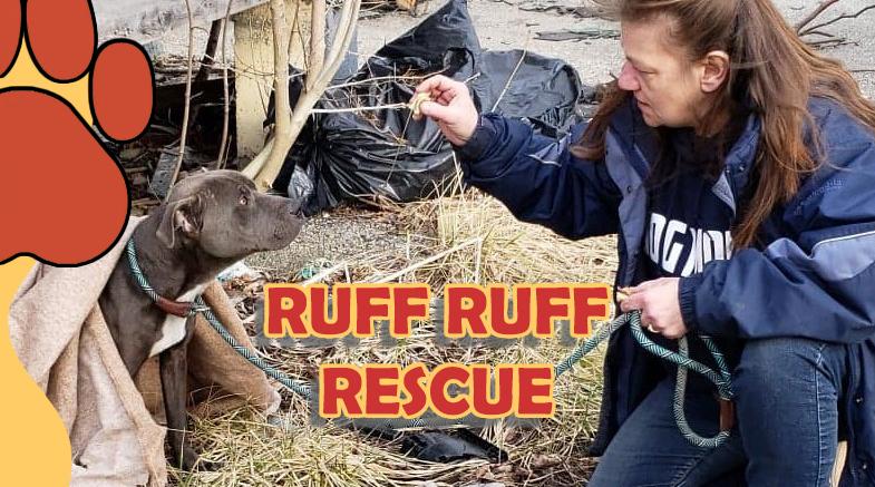 Ruff Ruff Rescue
