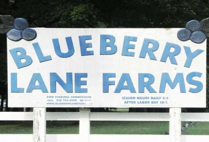 BLUEBERRY LANE FARMS