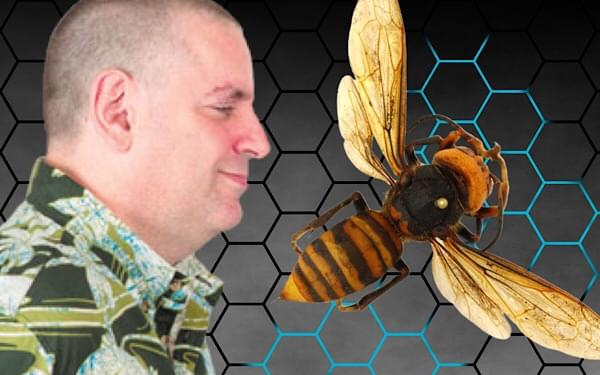 Gary's Blog: Buzzworthy