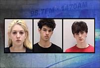 Three Arrested in Bartow County For Assault and Botched Robbery