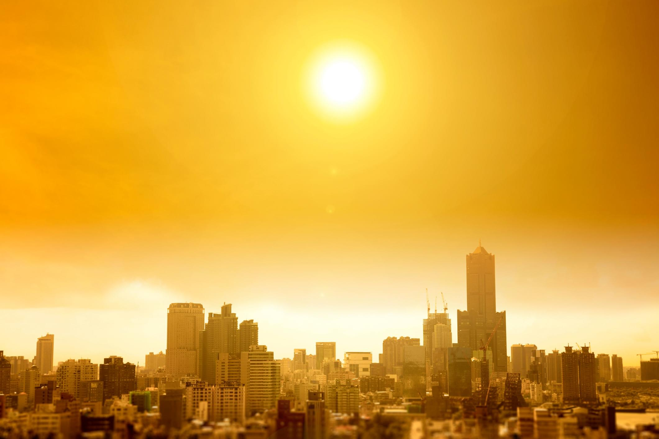 HEAT WAVE: The Country's Cooking