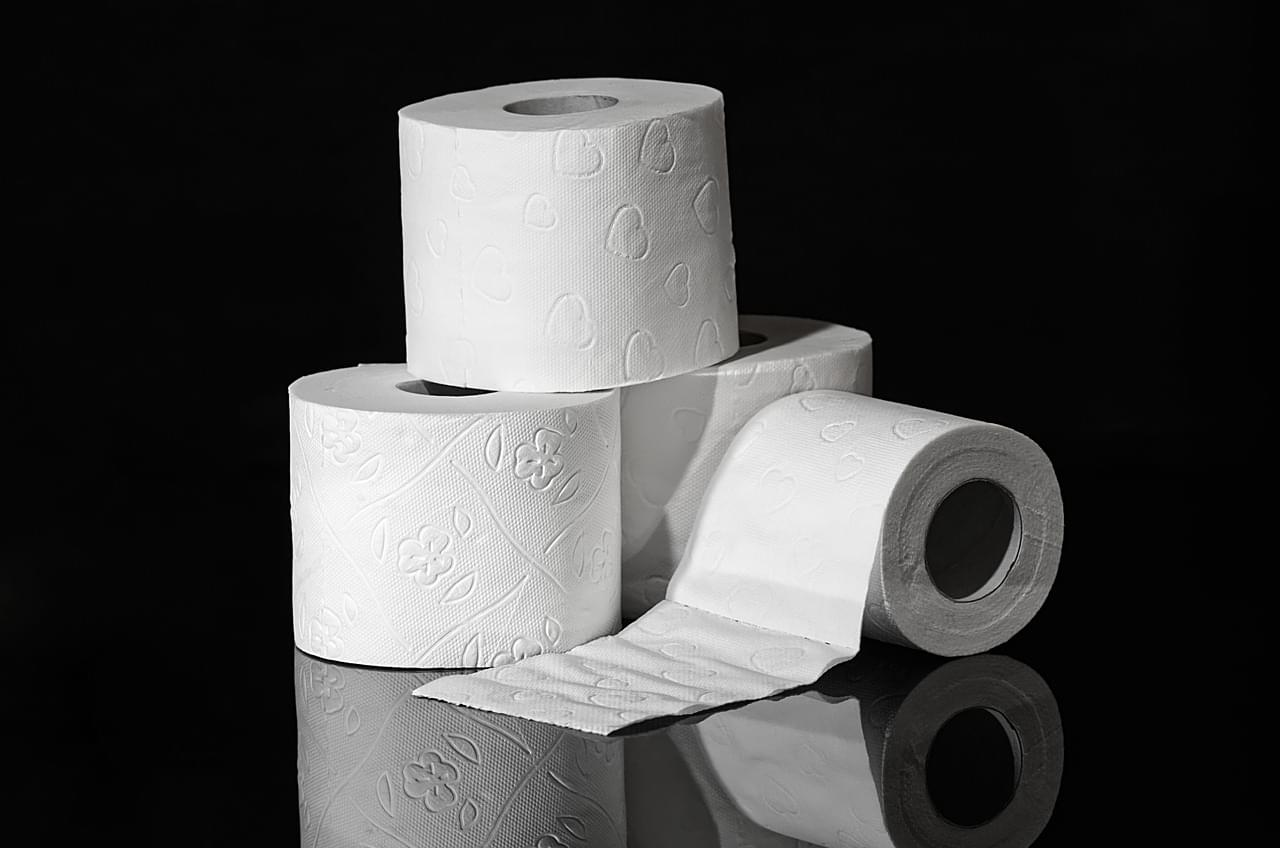 toilet-paper-3964492_1280(2)