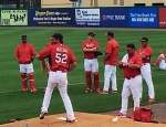 Cardinals Spring Training 2015