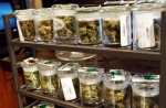 Research firm blames slow approval process for 'down' medical marijuana industry