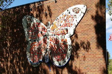Dennis Monarch Butterfly
