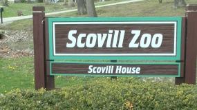 Scovill Zoo Opens for the 2016 Season Saturday (Video)