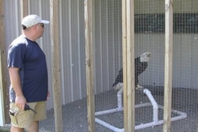 Your votes can help the Illinois Raptor Center win $50,000 (Video)