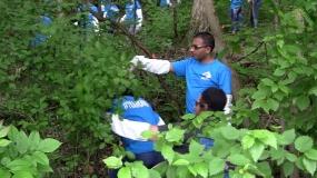 ADM Interns Volunteer at Fairview Park