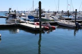 Newport (Photos)