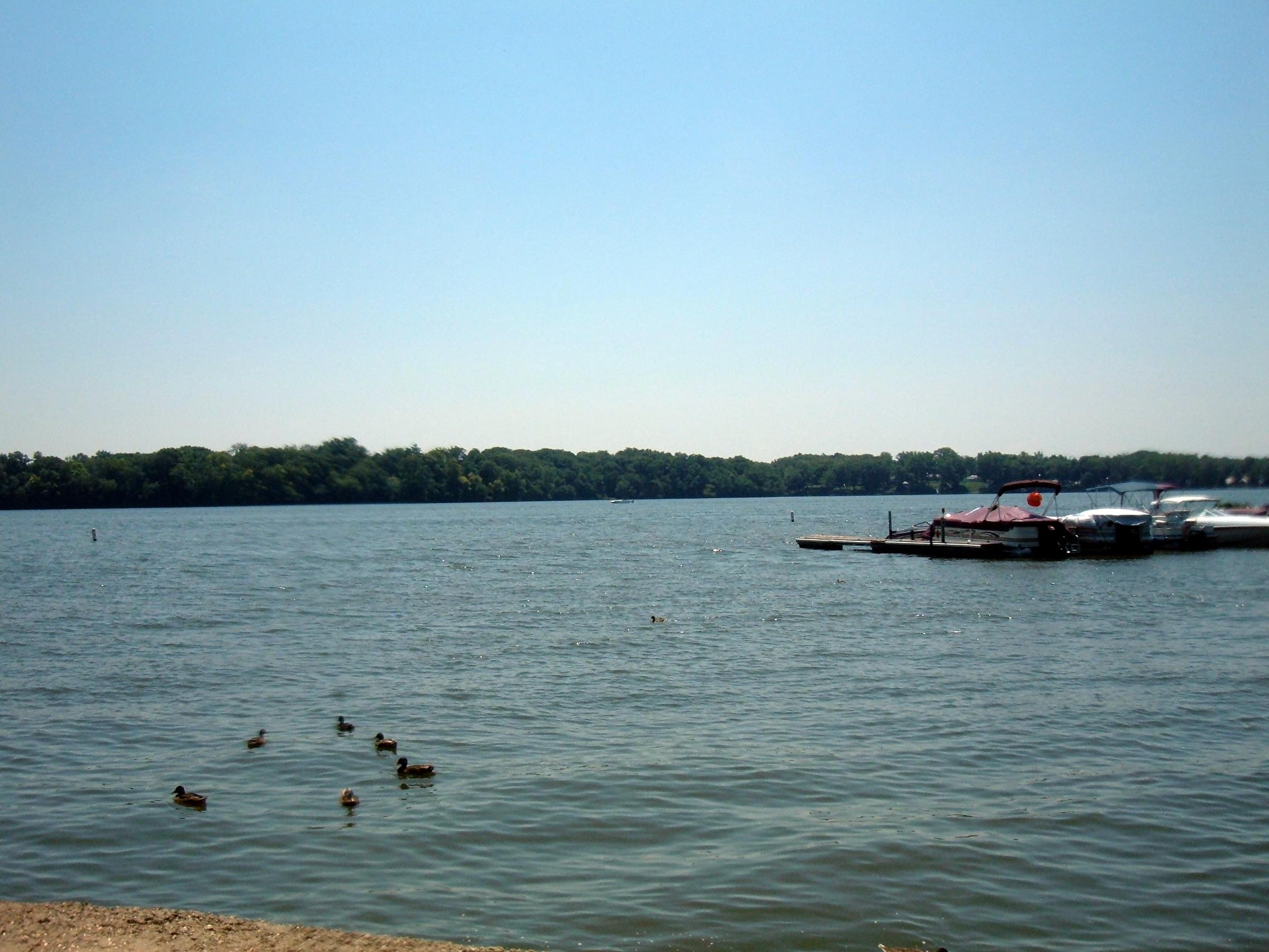 Lake_in_Nelson_Park