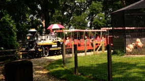 WATCH: Scovill Zoo Train Ride Fun