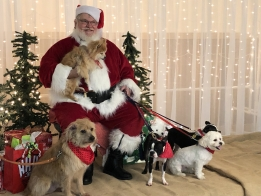 PHOTOS: Hudson Halfway Home Pictures with Santa
