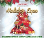 Holiday Expo 2019 : Shopping Extravaganza