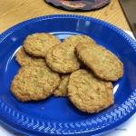 Coconut Oatmeal Cookies – 8/9/19