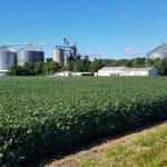 Vermilion County Farm Bureau Sets Outlook Meeting