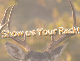 Show us Your Rack!