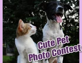 Show us your cute pets!