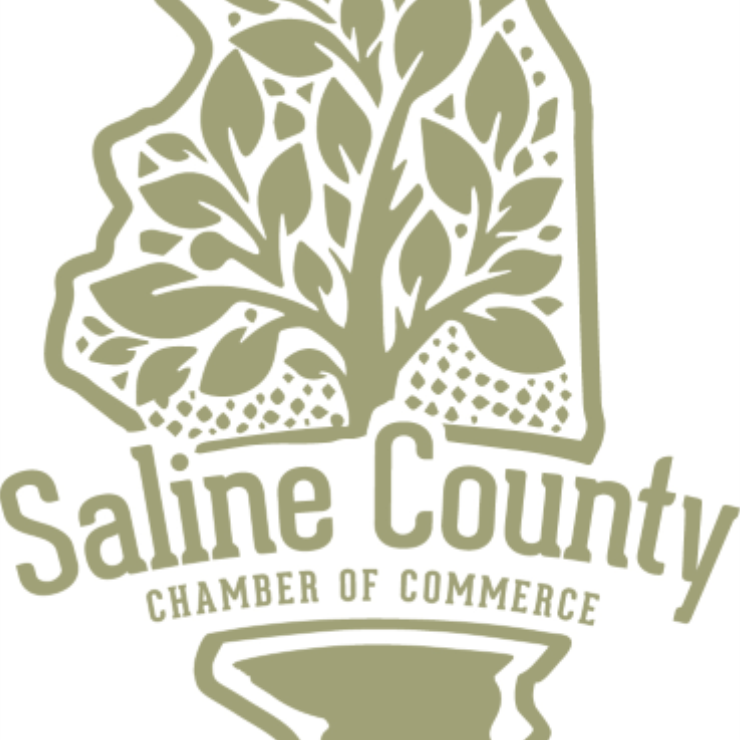 New Saline County Chamber of Commerce Director Settling Into Role