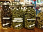 Final pieces coming together for rollout of Illinois' adult-use cannabis law