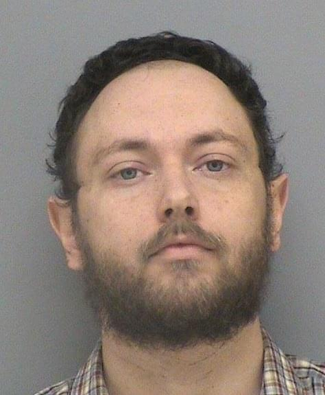 INA MAN SENTENCED TO IDOC ON MULTIPLE CHILD PORN CHARGES.